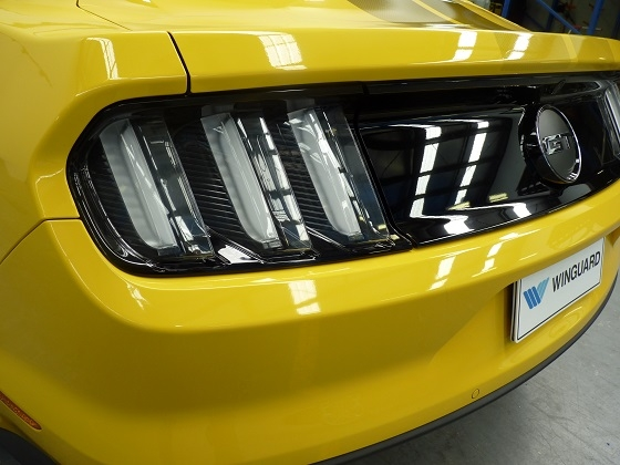Mustang GT Winguard paint protection film